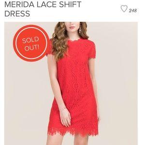 Francesca's Merida Lace Shift Dress